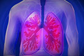 Biorezonancia állapotfelmérés